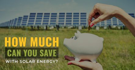 How Much Can You Save With Solar Energy?